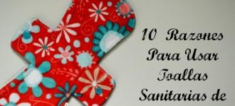 10 Razones para Usar