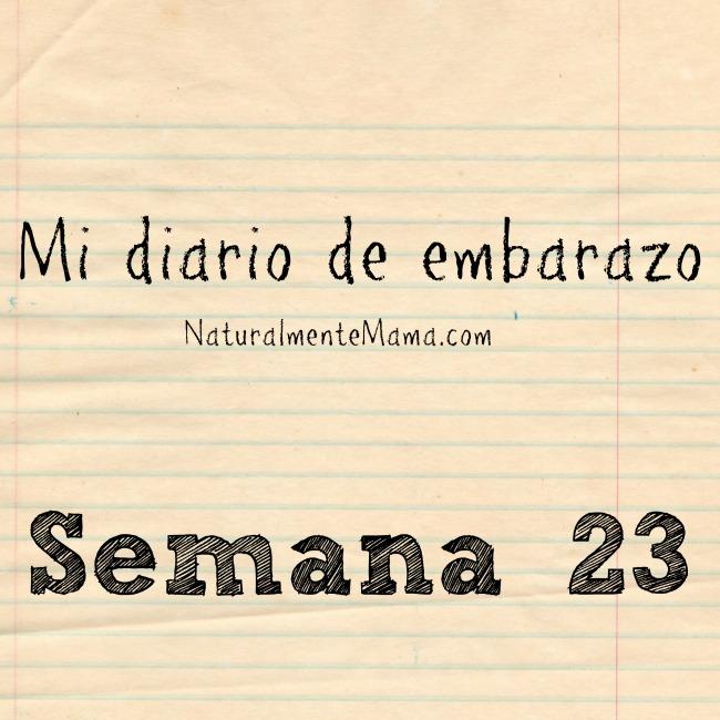 Mi diario de embarazo | Semana 23