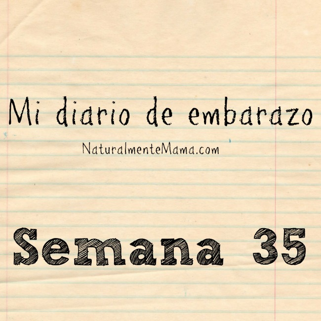 Mi Diario de Embarazo semana 35 instagram